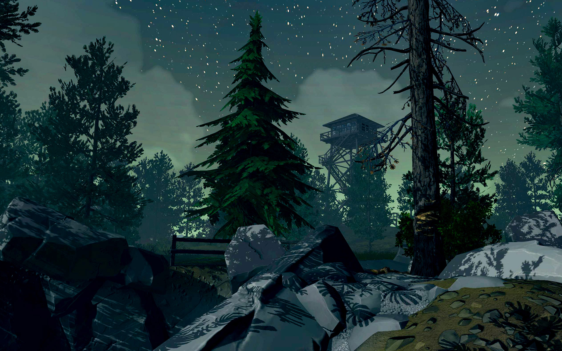 forest feature wallpaper