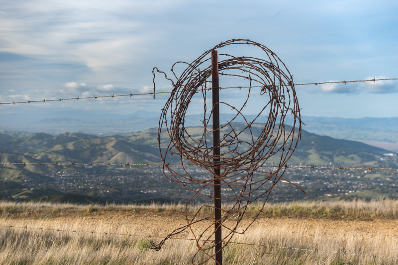 barbed wire loop and fence