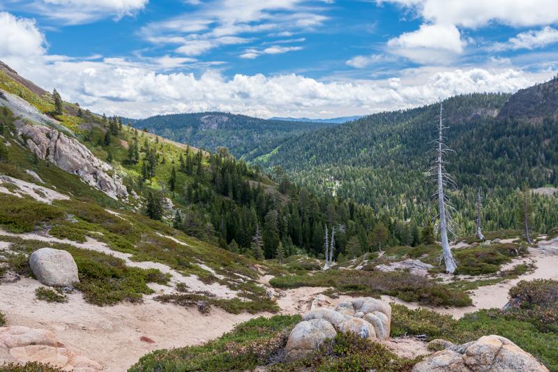 alpine meadows valley