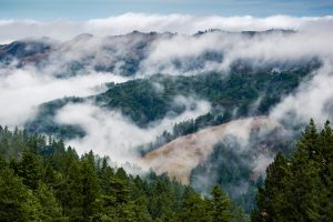 mist dissipating between hills and trees