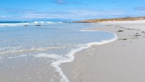 thin layer of water washing over a clean white sand beach
