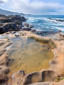 shallow pool on the rocky pacific coast